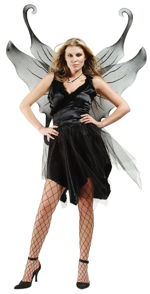 Adult Sexy Midnight Fairy Costume